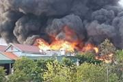 Vụ cháy tại Công ty Thông Quảng Ninh gây thiệt hại hơn 10 tỷ đồng