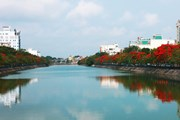 Phát triển, xây dựng Hải Phòng trở thành Thành phố Cảng xanh