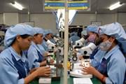 Kim ngạch thương mại Việt Nam-Malaysia tăng hơn 21% nửa đầu năm