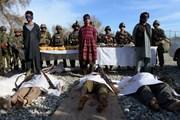Afghanistan: Các tay súng IS hành quyết thủ lĩnh cấp cao Taliban