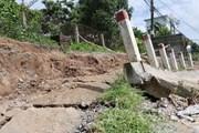 Đồng Nai: Điều tra vụ bờ kè chợ Tân Hạnh bị sập xuống sông