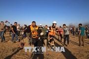 Israel: 2 người biểu tình Palestine bị bắn chết tại biên giới Dải Gaza