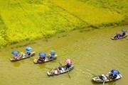 Hệ thống du lịch thông minh thu hút du khách đến với Ninh Bình