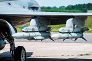 Thụy Điển: Máy bay chiến đấu rơi sau khi va chạm với chim