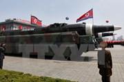 """""""Nga đóng vai trò quan trọng giải quyết khủng hoảng Triều Tiên"""""""