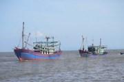 Malaysia liên tiếp bắt 70 ngư dân Việt Nam đánh bắt hải sản trái phép