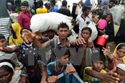 EU yêu cầu điều tra các vụ tấn công người Rohingya ở Myanmar