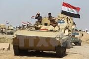 Tổ chức khủng bố IS mất gần 90% lãnh thổ tại Iraq và Syria