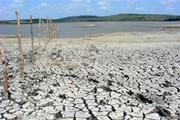 Cuba tạm thời thoát khỏi tình trạng khô hạn kéo dài suốt 3 năm qua