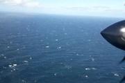 Mỹ đã xác định được vật thể gần nơi tàu ngầm Argentina phát tín hiệu
