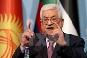 Palestine tiếp tục lên án việc Mỹ công nhận Jerusalem là thủ đô Israel