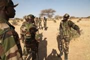 Ít nhất 7 binh sỹ Niger thiệt mạng trong vụ tấn công của Boko Haram