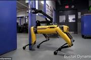 [Video] Robot gây kinh ngạc với khả năng tự mở cửa để chạy ra ngoài