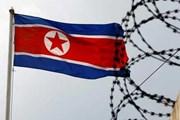 Chính phủ Ấn Độ áp đặt hạn chế hoạt động ngoại thương với Triều Tiên