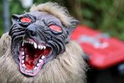 Nông dân Nhật Bản sử dụng 'robot quái vật' để bảo vệ mùa màng