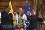Chính phủ Colombia và ELN cam kết xem xét một lệnh ngừng bắn mới