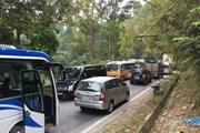 Lào Cai: Tắc đường kéo dài do xe container hỏng giữa đường