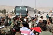 Syria: Phiến quân nhất trí rút khỏi các thị trấn ở Đông Ghouta