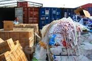 Thanh tra cấp phép nhập khẩu phế liệu, xử nghiêm cán bộ liên quan
