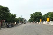 Hà Nội chặt hạ, di chuyển gần 1.200 cây xanh đường Phạm Văn Đồng