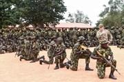 Đánh bom liều chết tại Nigeria khiến 13 người thiệt mạng