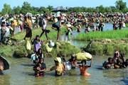 Quốc tế viện trợ khẩn hơn 344 triệu USD cho người tị nạn Rohingya