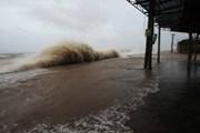 Chủ động ứng phó với áp thấp nhiệt đới có thể mạnh lên thành bão