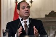 Ai Cập và Nga thảo luận khả năng nối lại đường bay thẳng