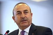 """Thổ Nhĩ Kỳ lo ngại nguy cơ quan hệ Ankara-Washington bị """"phương hại"""""""