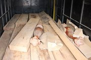 Quảng Bình: Phát hiện xe chở gỗ không có giấy tờ hợp pháp