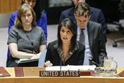 Mỹ sẵn sàng đàm phán với người Palestine về hòa bình Trung Đông