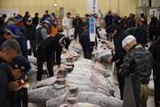 Hàn Quốc quyết theo đuổi đến cùng vụ kiện với Nhật Bản tại WTO