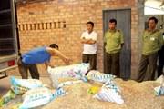 Vĩnh Long ngăn chặn hơn 3 tấn phân bón giả tung ra thị trường
