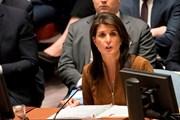 Đại sứ Mỹ Haley tuyên bố quan hệ với Tổng thống Trump vẫn 'hoàn hảo'