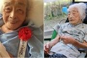 Cụ bà cao tuổi nhất thế giới hiện nay vừa qua đời tại Nhật Bản