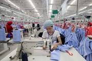 CPTPP - Cơ hội và sức ép để Việt Nam cải cách thể chế kinh tế