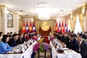 Phó Chủ tịch nước Đặng Thị Ngọc Thịnh thăm chính thức Lào