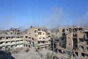 Quân đội Syria giành lại khu vực rộng lớn gần biên giới Iraq từ tay IS