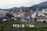 Vụ sập cầu ở Italy: Chưa có thông tin về công dân Việt Nam thương vong
