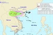 Bão số 4 ảnh hưởng trực tiếp đến các tỉnh từ Quảng Ninh đến Nghệ An