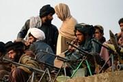 Bốn nước nhóm họp tìm cách nối hòa đàm với Taliban ở Afghanistan