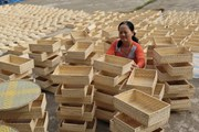 Phát triển ngành mây tre đan xuất khẩu: Cần vùng nguyên liệu ổn định