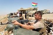 Phe đối lập khu tự trị người Kurd kêu gọi chính quyền tự trị từ chức