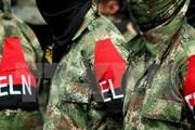 Chính phủ Colombia và nhóm ELN xem xét nối lại hòa đàm
