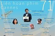 [Infographics] Các giải thưởng tại Liên hoan phim Cannes 71