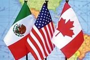 Mỹ nhấn mạnh tầm quan trọng của việc ký kết Hiệp định NAFTA mới