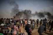 Tel Aviv kêu gọi EU ngừng tài trợ các nhóm ủng hộ tẩy chay Israel