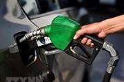 Giá dầu thế giới hạ nhẹ trước diễn biến mới liên quan Triều Tiên