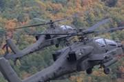 Đài Loan đưa vào phiên chế phi đội trực thăng tấn công Apache