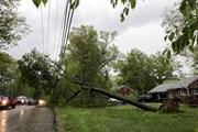 Mỹ: Lốc xoáy tại bang Iowa làm ít nhất 17 người bị thương